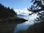 Orcas Views