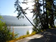 Morning in northwestern Washington