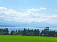 Random View On Whidbey