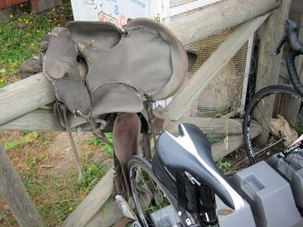 A study of saddles.