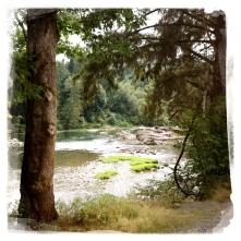 More Snoqualmie River
