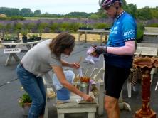 Getting honey treats at a lavender farm