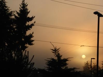 Sun rises over Port Angeles before the start